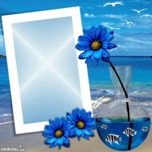 Nature Frame Blue