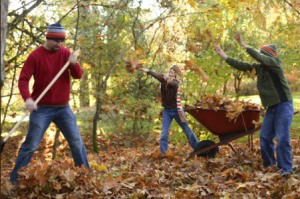 Photo Source: http://www.meijer.com/content/content.jsp?pageName=fall_features