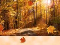 Photo Source: thanksgivingwallpapers.blogspot.com